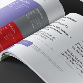 Company Brandbook